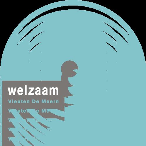 logo Welzaam